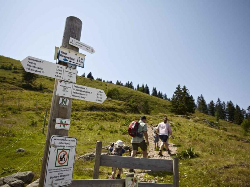 Familie beim Wandern am Feldberg_High Res_4935