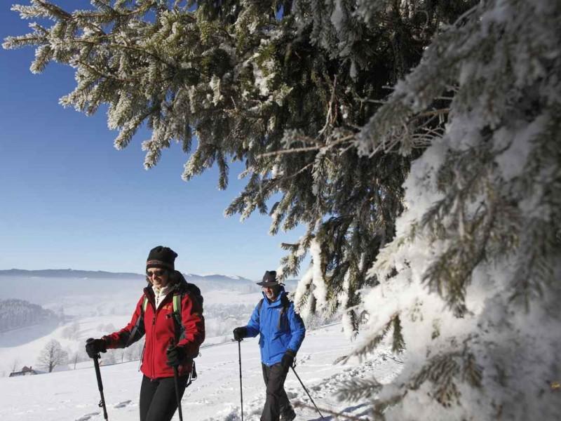 Winterwandern mit der Familie_High Res_3188